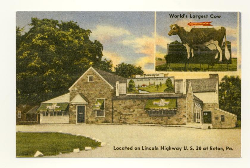 cow_linenpostcard